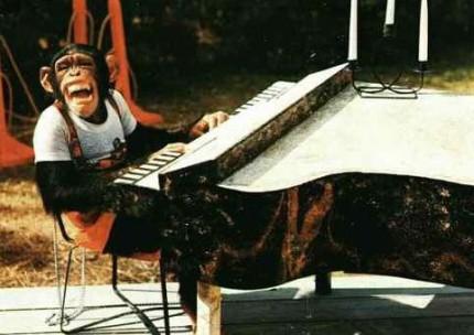 monkey-piano